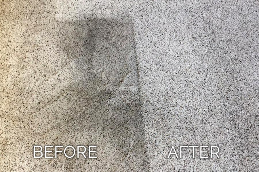 Dan's Carpet Cleaning Before and After 04