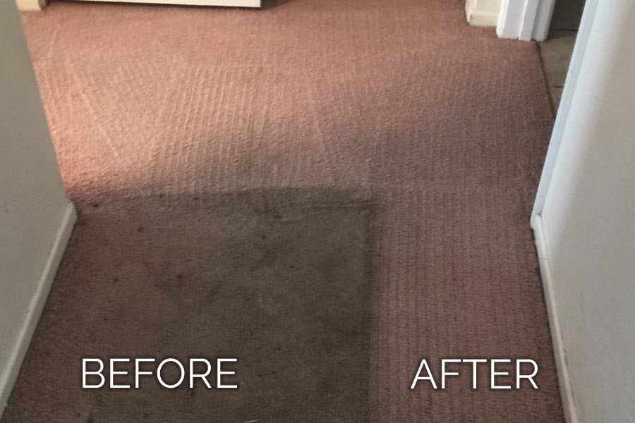 Dan's Carpet Cleaning Before and After 01
